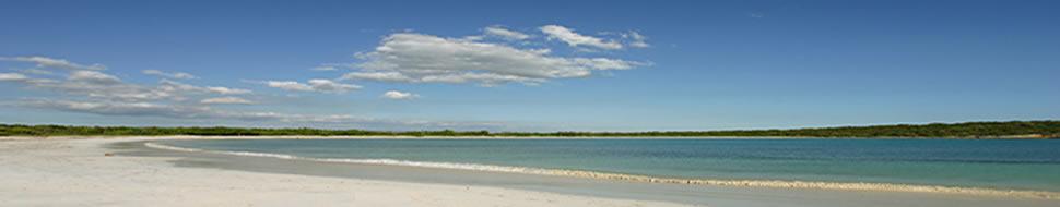 Um arquipélago com diversidade de ecossistema