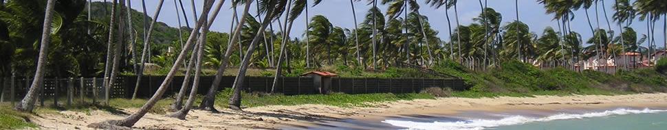 A melhor festa e praia do Caribe!