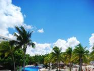 Oasis Palm - All Inclusive